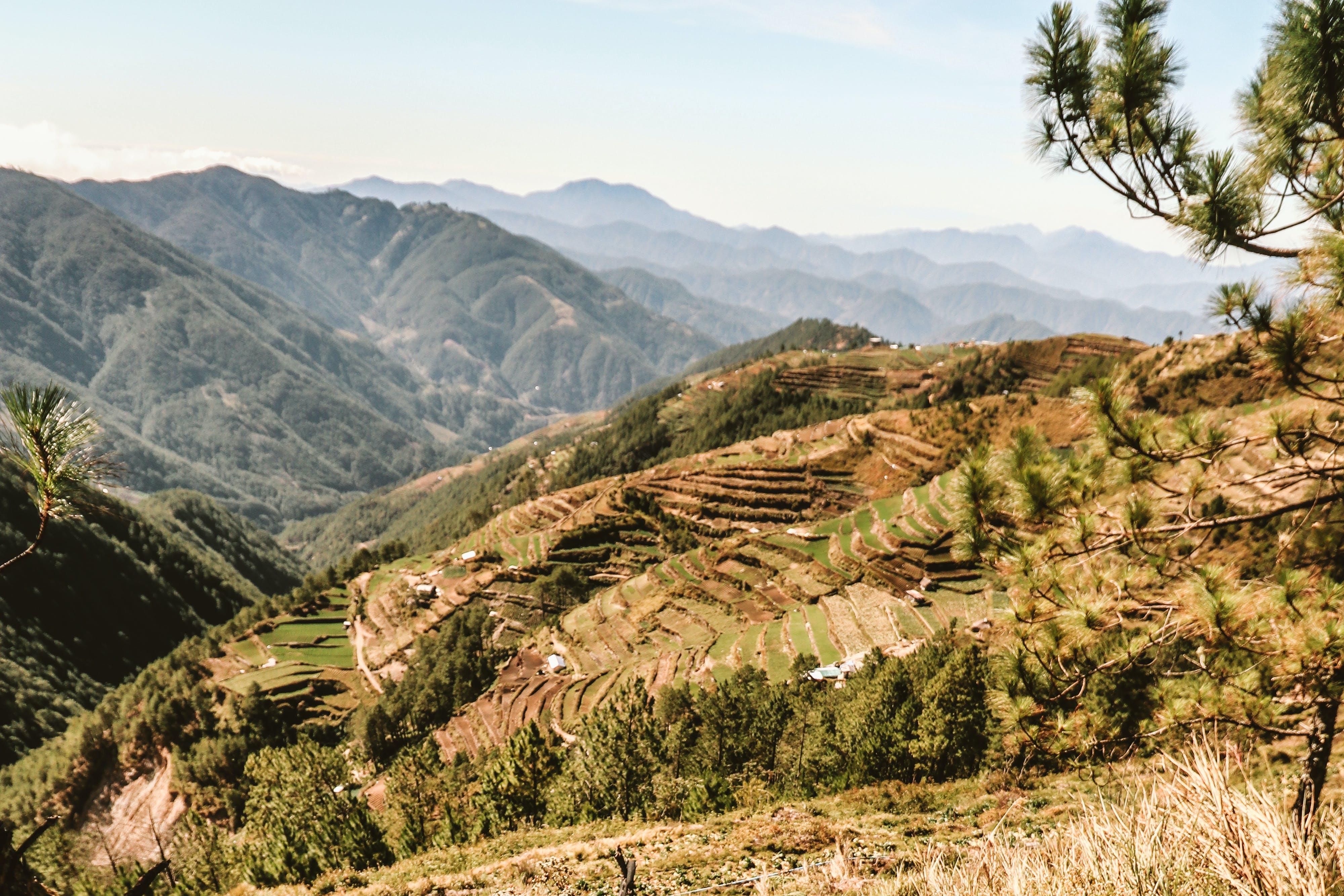 Kostenloses Stock Foto zu berg, natur, philippinen, reisterrassen