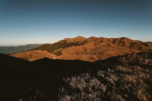 天性, 性質, 戶外, 景觀 的 免費圖庫相片