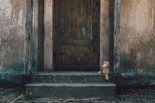 Brown Teddy Bear Near Wooden Door