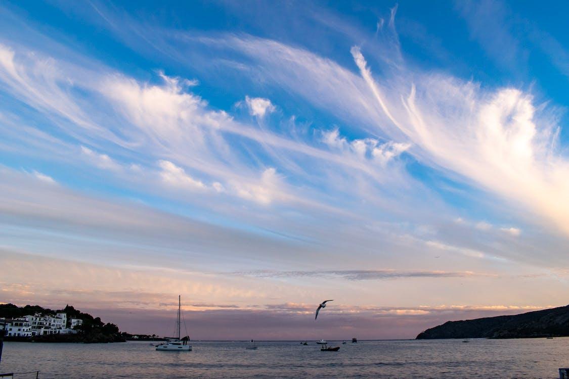 Free stock photo of clouds, coast, sea