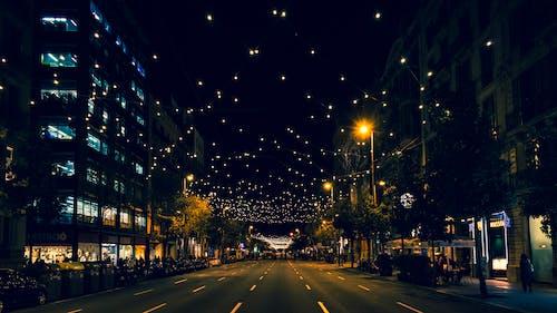 Free stock photo of christmas lights, city, city lights, lights