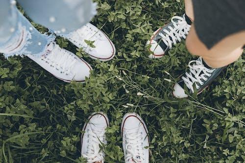 Základová fotografie zdarma na téma chodidla, obuv, přátelé, tenisky