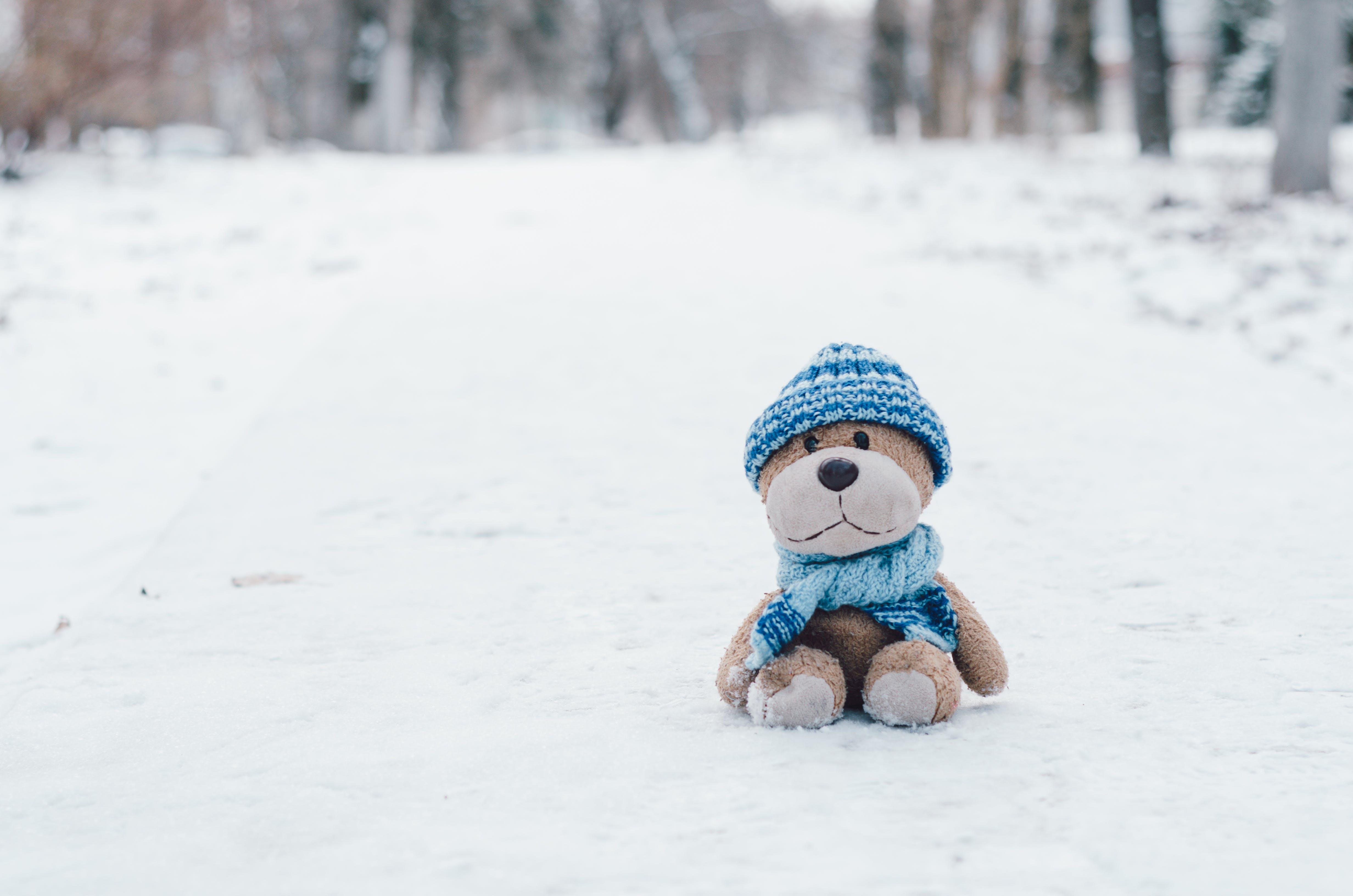 Stuffed Toy On Snow