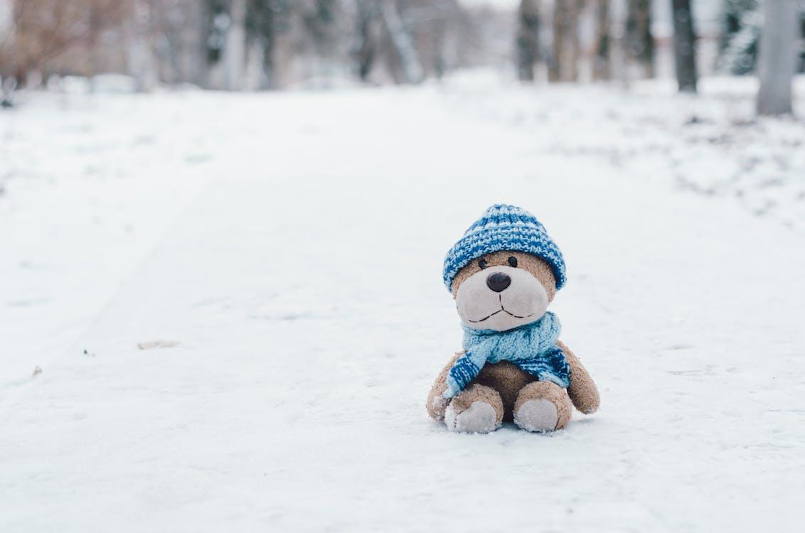 Stofftier Auf Schnee