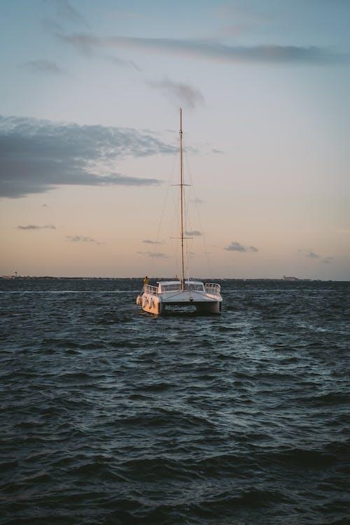 acqua, alba, barca