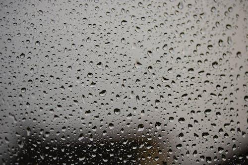 Free stock photo of rain, raindrops