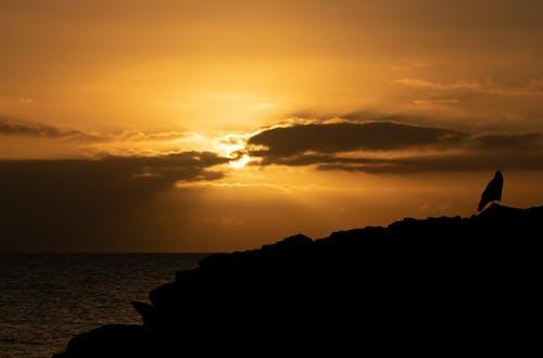 Free stock photo of beautiful, clouds, nature