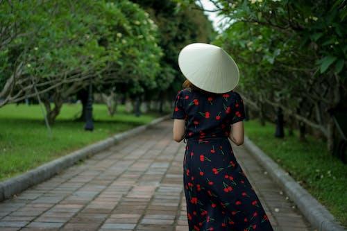 叶帽子, 女人, 樹, 樹木 的 免费素材照片