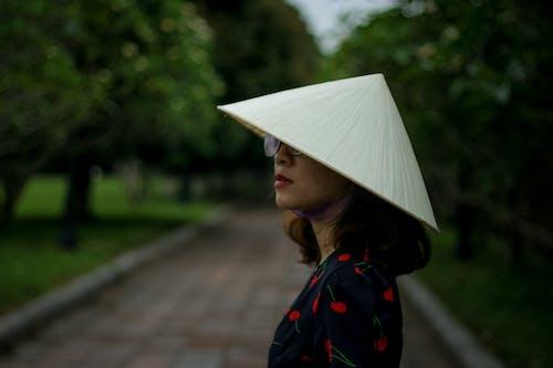 叶帽子, 女人, 樹, 看著 的 免费素材照片