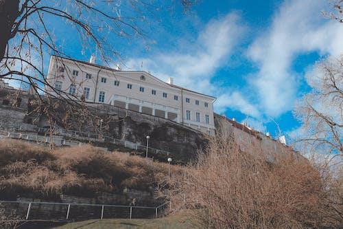 에스토니아, 탈린의 무료 스톡 사진