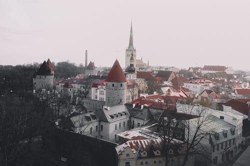 건물, 구시가지, 도시, 에스토니아의 무료 스톡 사진