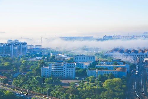 #多雾路段, #早上, #站 的 免费素材照片