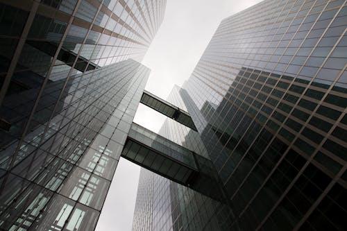 ガラス窓, ダウンタウン, ビジネス, ブリッジの無料の写真素材