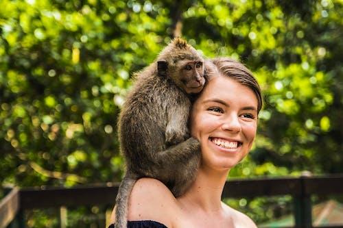 Základová fotografie zdarma na téma dslr, opice, přátelství