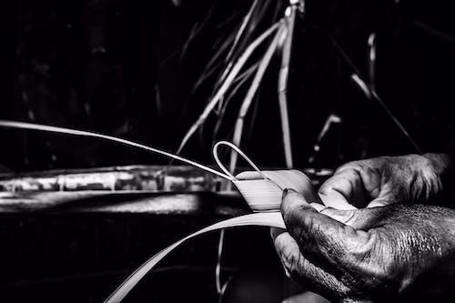 Základová fotografie zdarma na téma #vietnamština, černobílá, kultura, ruka