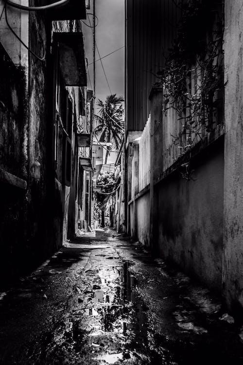 Základová fotografie zdarma na téma asijský, dslr fotoaparát, odraz, Vietnam