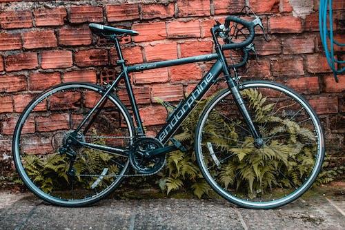 Free stock photo of bicycle, brick, brickwall