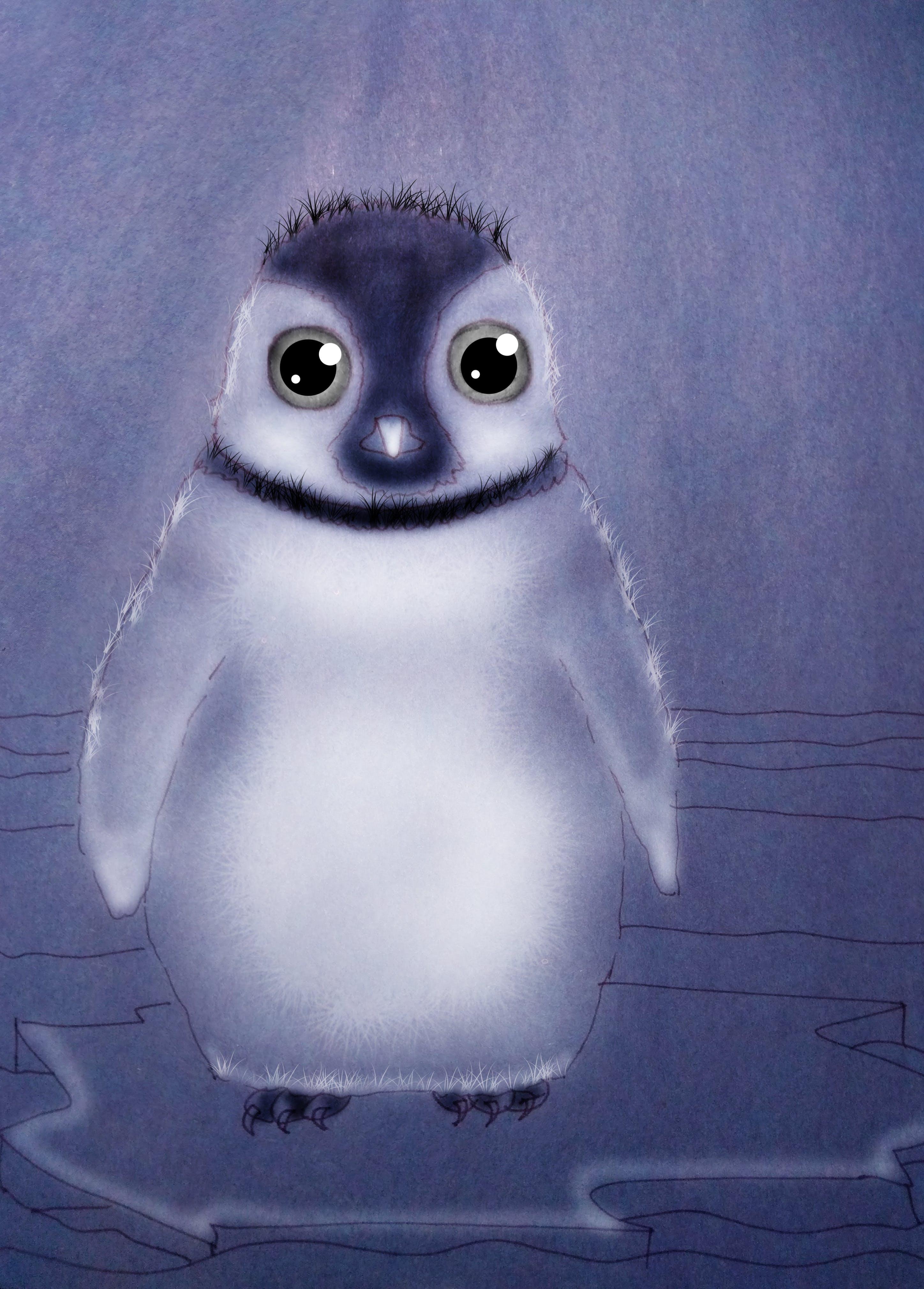 Foto profissional grátis de pinguim, pinguins