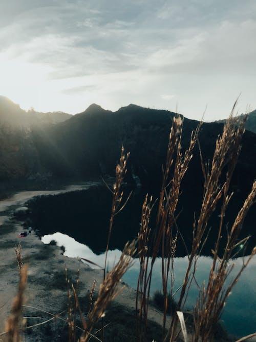 Foto d'estoc gratuïta de aigua, capvespre, cel, centellegi del sol