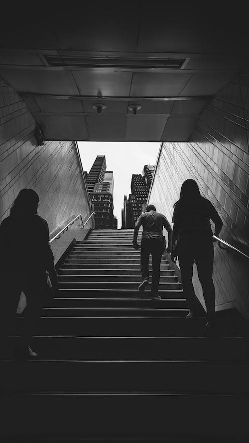 건물, 계단, 블랙 앤 화이트, 지하철의 무료 스톡 사진