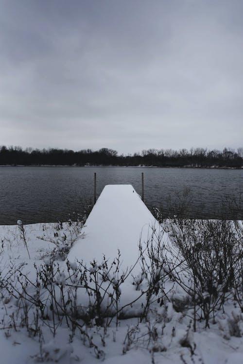 冬天的brigde, 冬季, 橋, 碼頭 的 免费素材照片
