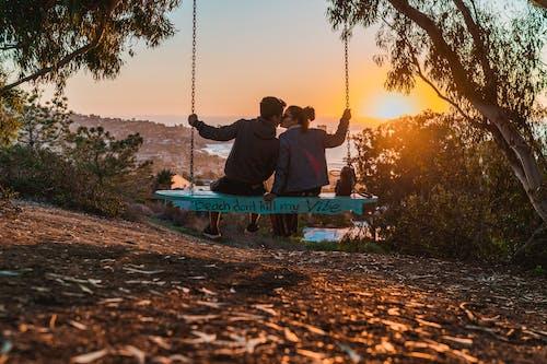 Immagine gratuita di alberi, ambiente, appeso, baciando