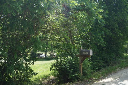 Free stock photo of bushes, driveway, mailbox, yard