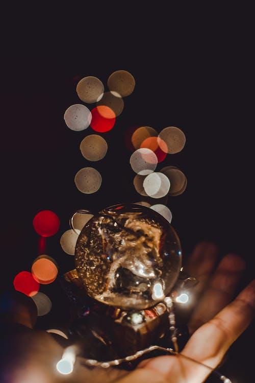 Gratis lagerfoto af luzes, natal, portrætter, vinicius vieira fotografia
