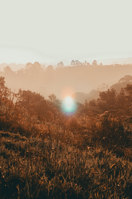 Kostenloses Stock Foto zu außerorts, bäume, berge, draußen