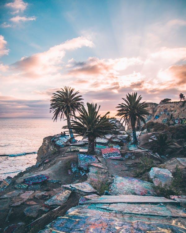Бесплатное стоковое фото с берег, берег моря, берег океана