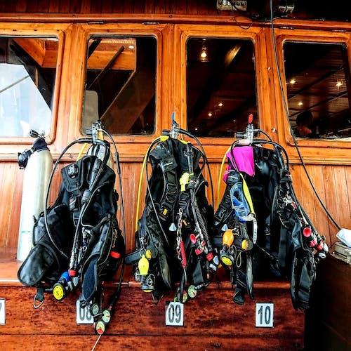 Gratis stockfoto met # duiken. # scuba