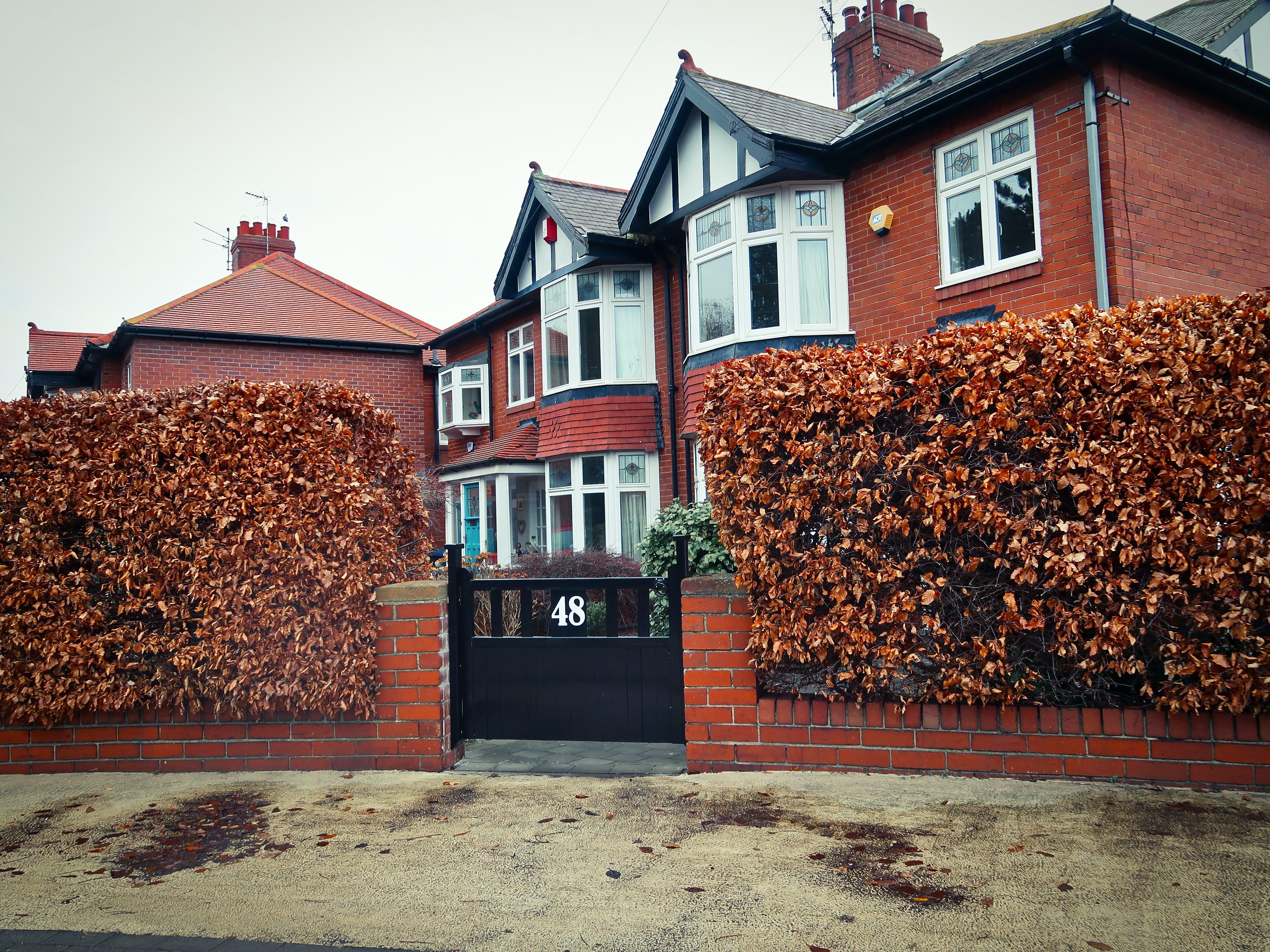 Foto profissional grátis de 48, arbusto, britânico, casa britânica