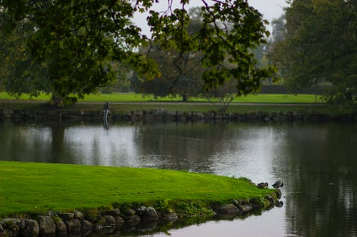Free stock photo of castle, castle lake, garden