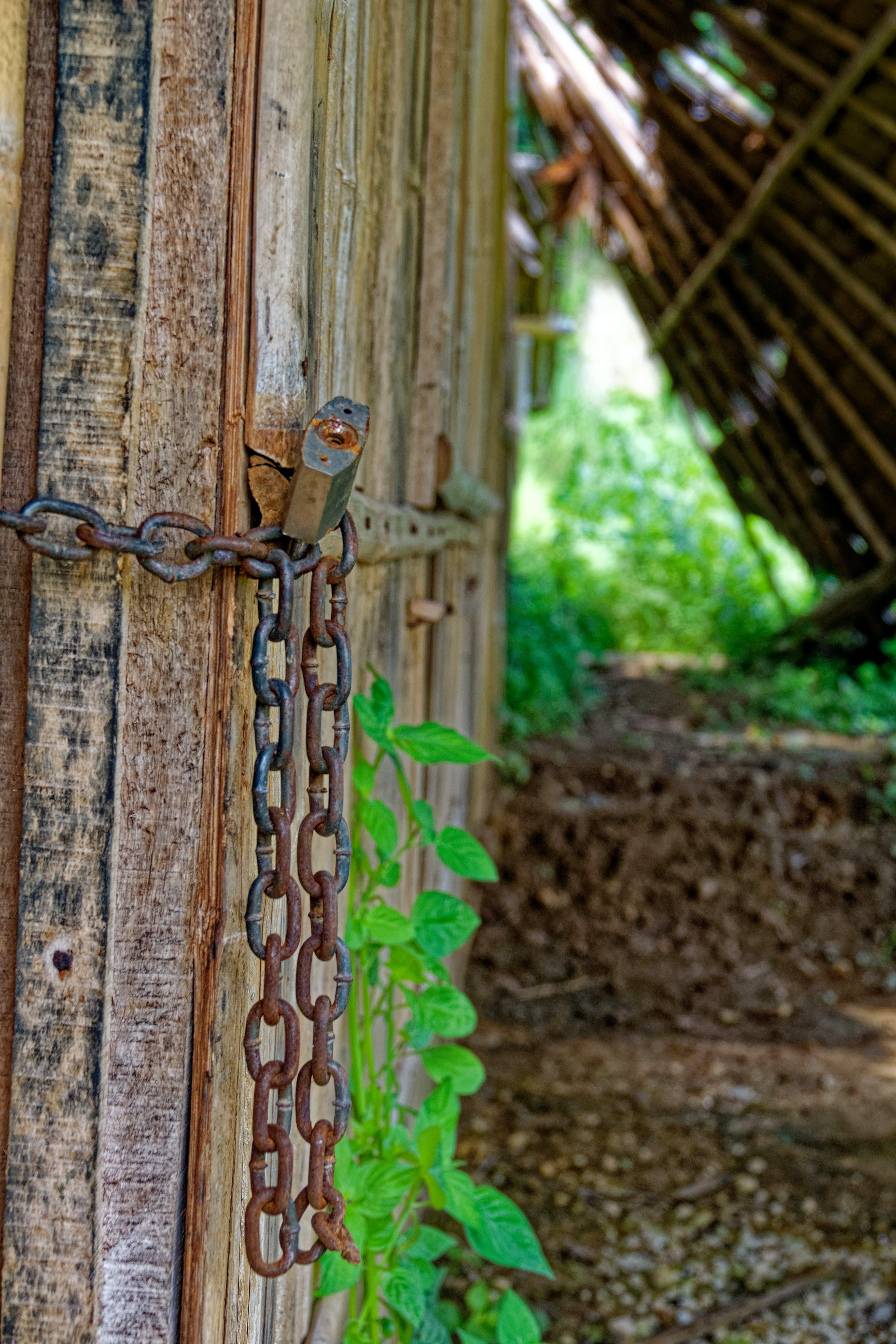 Free stock photo of architecture, bamboo, chain, closeup