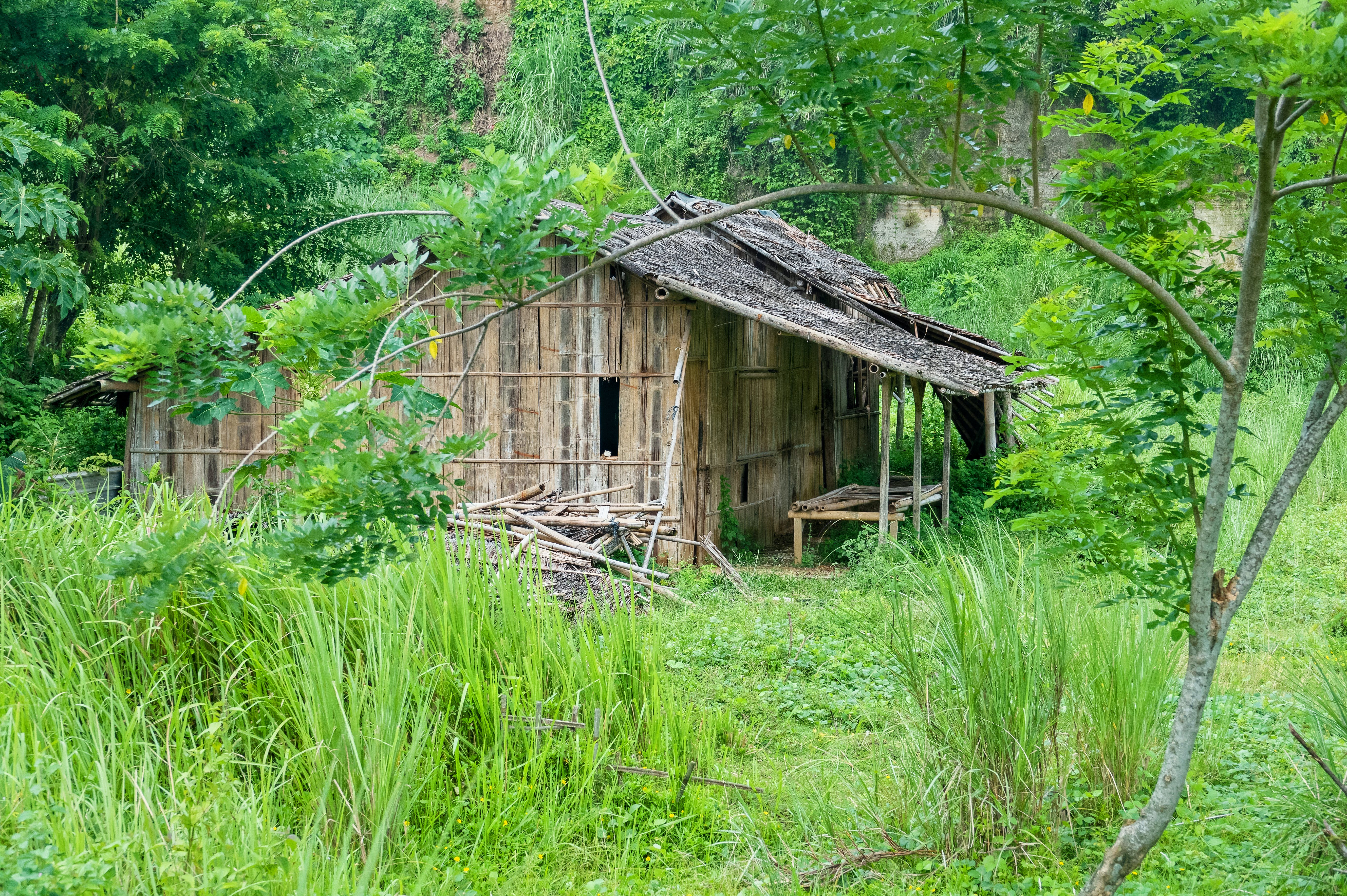 Free stock photo of abandoned, architecture, building, cabin