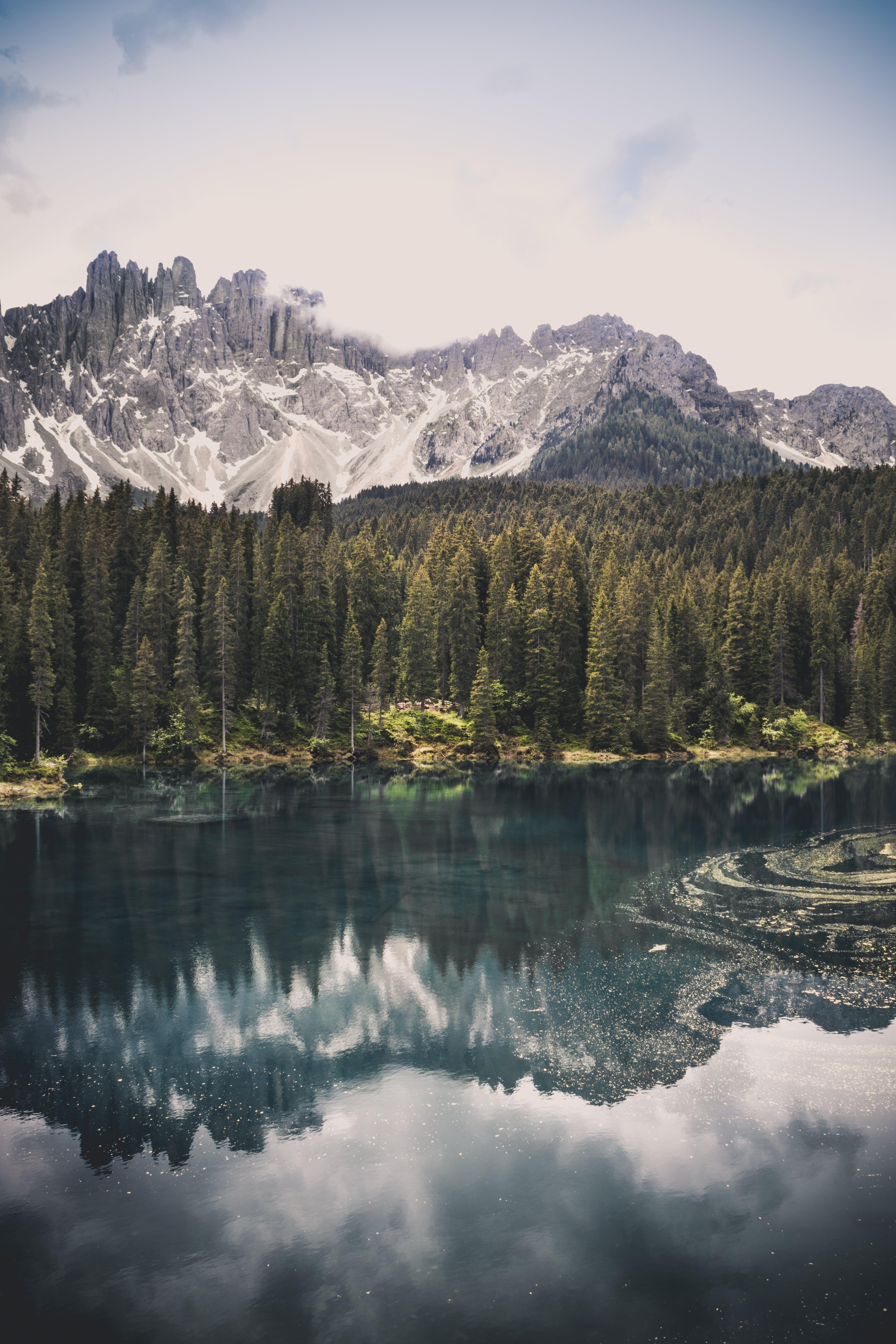 Kostenloses Stock Foto zu abenteuer, bäume, berg, bewölkt