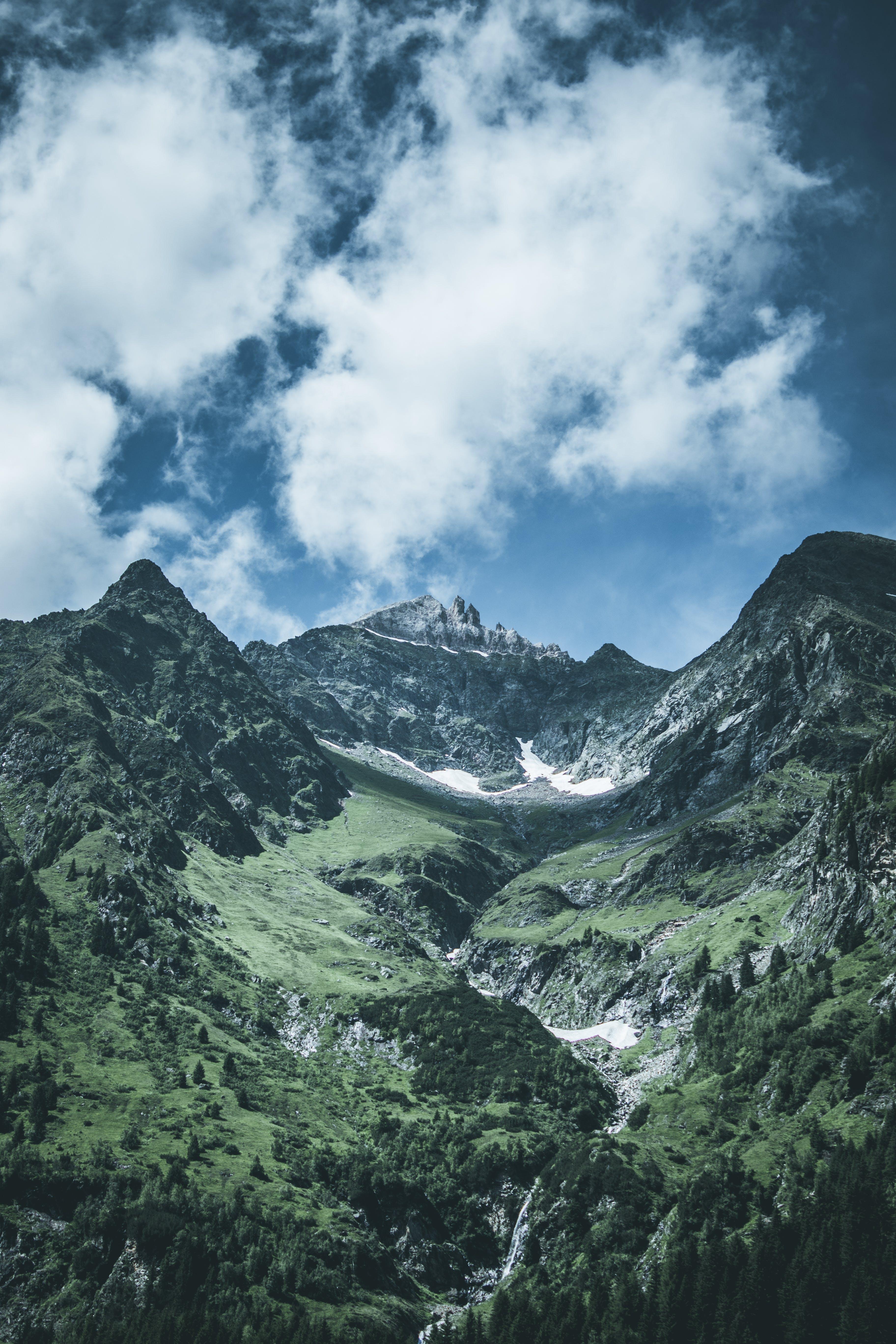 Бесплатное стоковое фото с вечнозеленый, гора, деревья, дневной свет