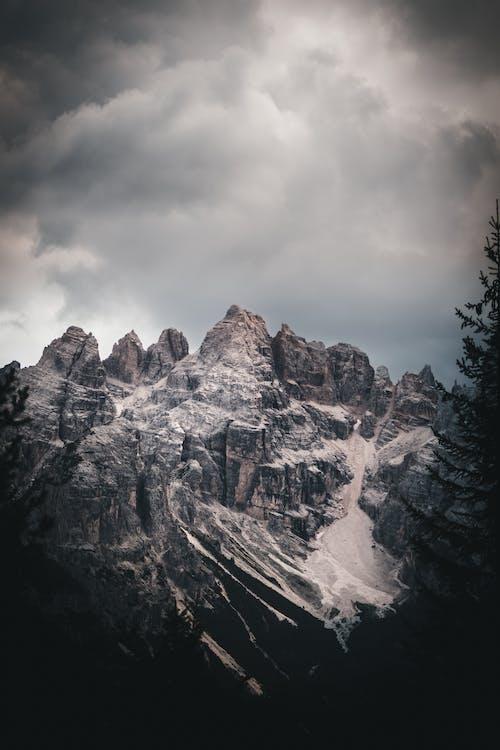 Immagine gratuita di alba, albero, avventura, cielo
