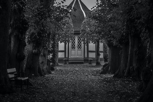 Free stock photo of charming house, fyn, timbered