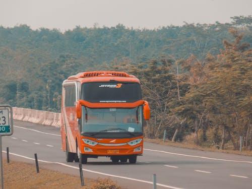 インドネシア, バス停, 寂しいの無料の写真素材