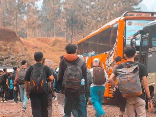 アジア人, コミュニティ, ティールの無料の写真素材