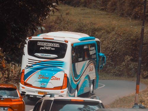 スクールバス, バス停, 山の無料の写真素材