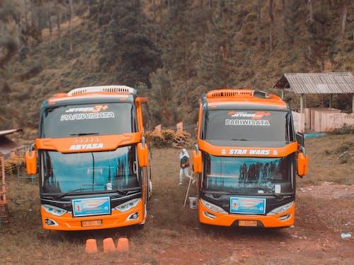 スクールバス, 人間, 山の無料の写真素材