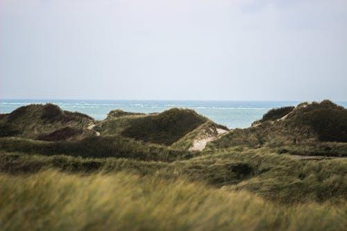 Gratis arkivbilde med sjø, strand, strand og sjø