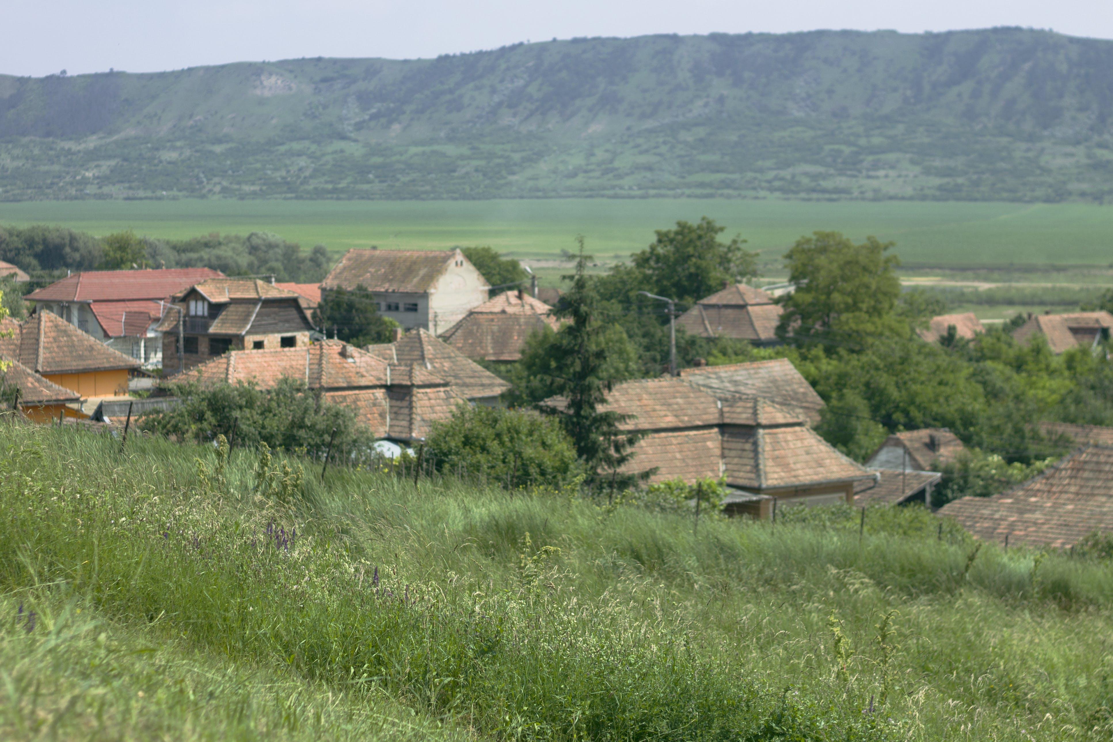 Foto d'estoc gratuïta de poble, Romania, tradicional, transsilvània