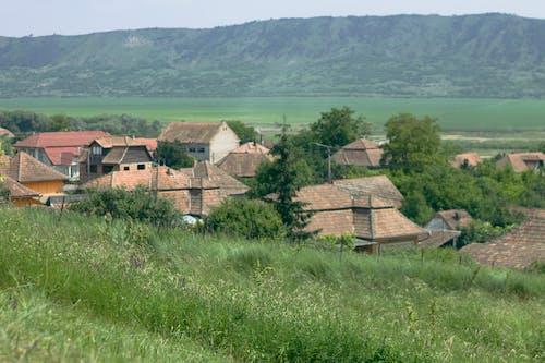 Free stock photo of romania, traditional, Transylvania, village