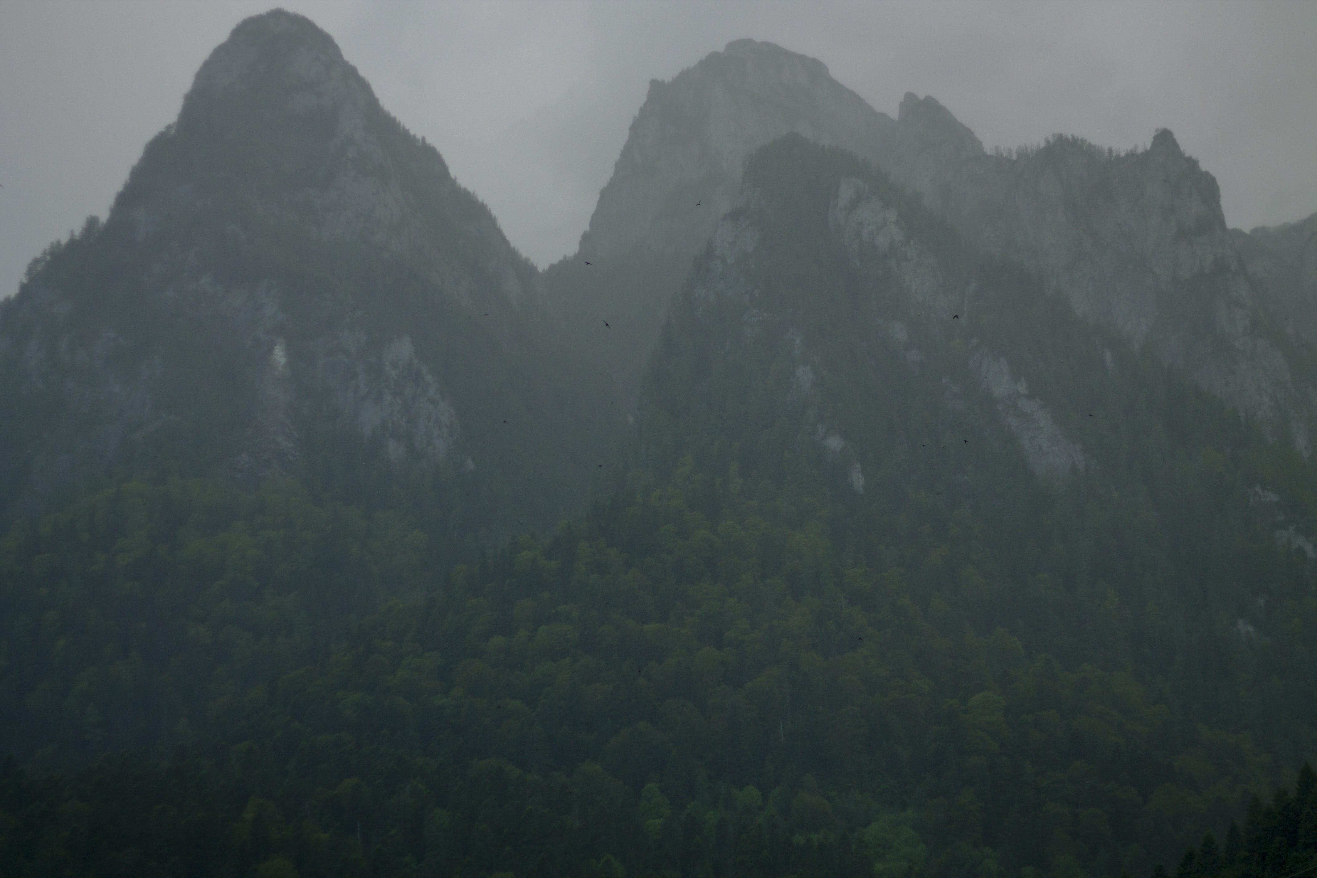 Foto d'estoc gratuïta de muntanyes, natura, Romania, roques