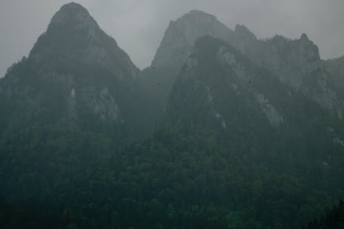 Free stock photo of mountains, nature, rocks, romania