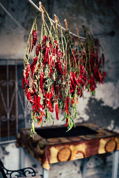 Безкоштовне стокове фото на тему «matera, sassi di matera, перець, перець чилі»