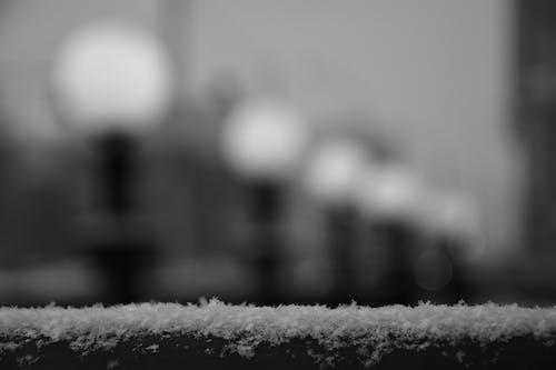 Foto d'estoc gratuïta de blanc i negre, foto macro, hivern, macro
